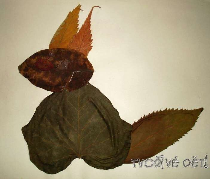Obrázky z listí